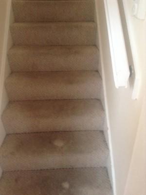 Fern Lea Stairs before 1
