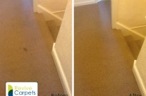 Hall, stairs and landing carpet cleaning