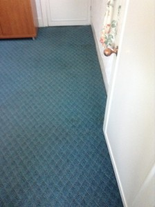 Revive Carpet Cleaning Bolton - rust stained carpet after